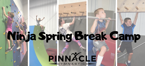 Spring Break Camps (1)